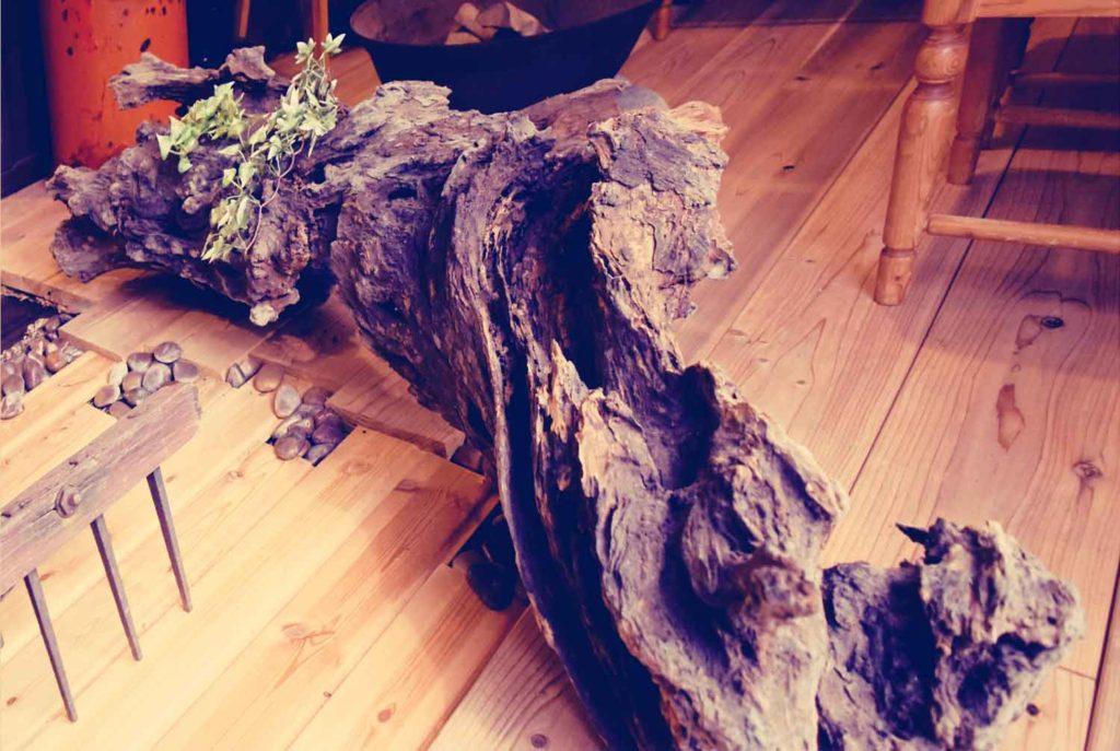 欅材の古木
