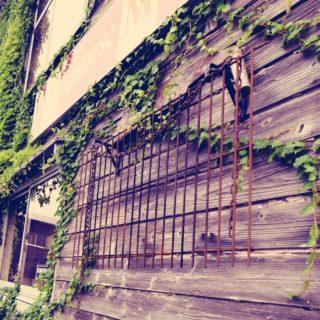 杉の古びた板壁の外壁